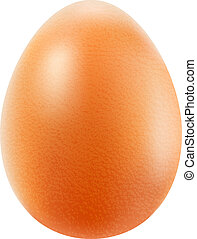 Realistic brown egg isolated on white background. Vector eps10 illustration