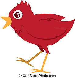 Isolated red bird walking with mouth open