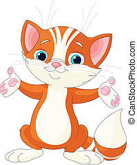 Red Kitten raising his hands