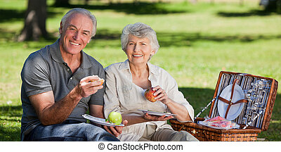 Retired couple picnicking in the garden