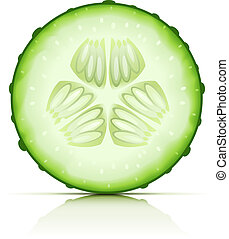 ripe cucumber cut segment vector illustration isolated on white background EPS10. Transparent objects used for shadows and lights drawing