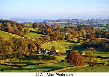 Typical English rural scene with rolling countryside and grazing sheep with Autumn colours