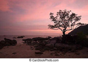 The sky glows in pink after sunset at the beach in Langkawi Island, Malaysia. Details include a couple sitting intimately together under the tree by the boulders.