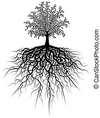 Illustration of a tree and its roots