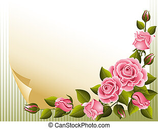 pink roses and paper