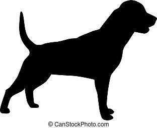 Rottweiler dog silhouette