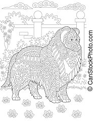 Rough Collie. Shetland Sheepdog or Sheltie dog breed. Coloring page. Freehand sketch.
