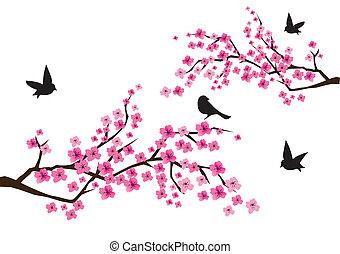 vector cherry blossom with black birds