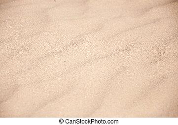 sand on the beach close up