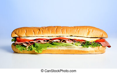 A beautiful meat, lettuce, tomato and cheese sandwich on a blue sky background