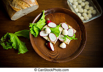 sandwich with cheese, lettuce and red radish on a wooden