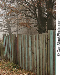 autumnal country scene with old wooden fence and oaks