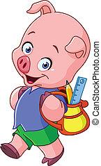 School pig
