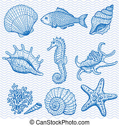 Sea collection. Original hand drawn illustration in vintage style