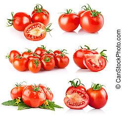 set fresh tomato vegetables isolated on white background