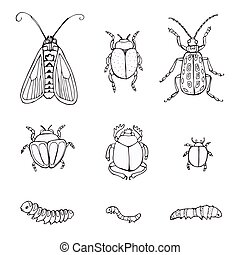 set hand-drawn doodle insects. Sketch of insects
