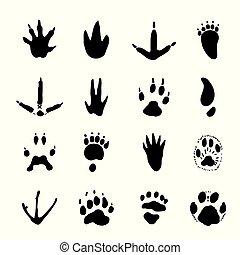 Set of Animal Spoor Footprints element Icon Vector illustration.