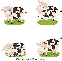 Set of cute vector cows