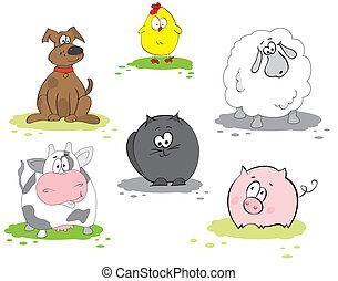 Set of domestic animal