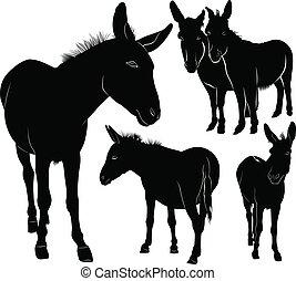set of donkeys silhouettes