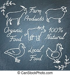 Set of farm animals icons and lettering on chalkboard