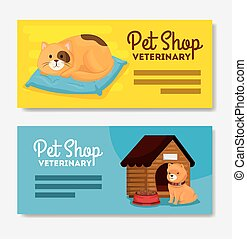 set poster of pet shop veterinary with cat and dog