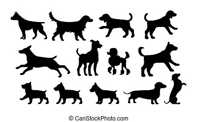Set walking and standing dog silhouette. Vector black icon
