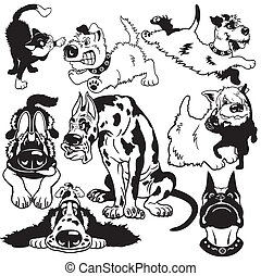 set with cartoon dogs difference breeds, black and white pictures