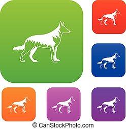 Shepherd dog set collection