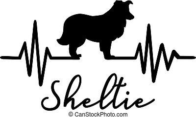 Shetland Sheepdog Sheltie heartbeat word