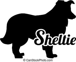 Shetland Sheepdog Sheltie silhouette real word