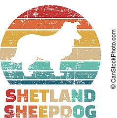 Shetland Sheepdog vintage color