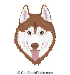 Red Siberian husky with blue eyes and sticking out tongue. Hand drawn portrait of dog. Vector illustration