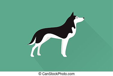 siberian husky vector flat illustration clean and simple style