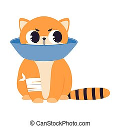 Sick Kitten Wearing Pet Cone Collar Sitting with Splinting Paw, Cute Pet Baby Animal Cartoon Vector Illustration Isolated on White Background.