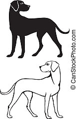 Silhouette and contour illustration of dog