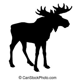 silhouette moose on white background