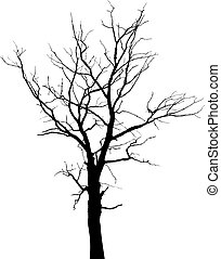 Dead tree with branches and without leaves - vector silhouette
