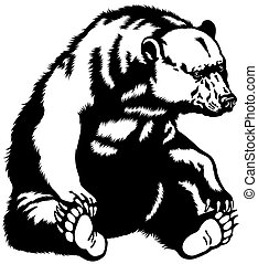 grizzly bear, sitting pose, black and white image