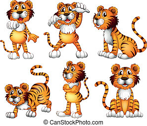 Illustration of the six positions of a tiger on a white background