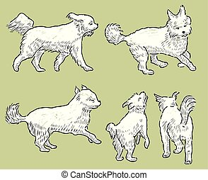 sketches of a playful terrier
