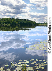 Sky reflexion in a water smooth surface of lake with growing water-lilies