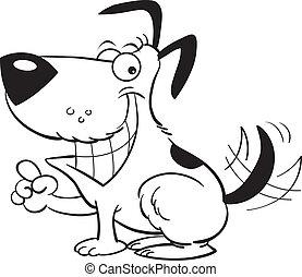 Smiling dog pointing
