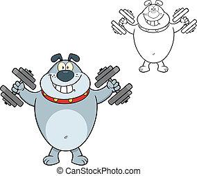 Smiling Gray Bulldog With Dumbbells