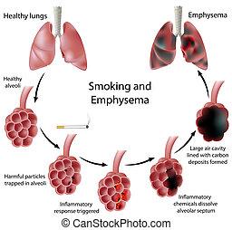 Smoking and Emphysema, eps8