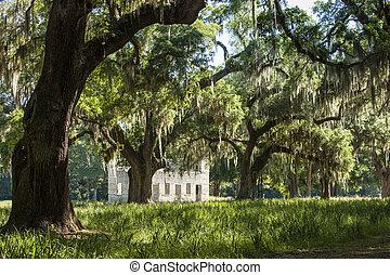 South Carolina lowcountry
