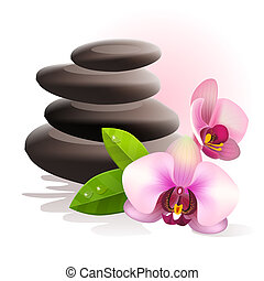 Spa stones and fresh pink orchid flowers