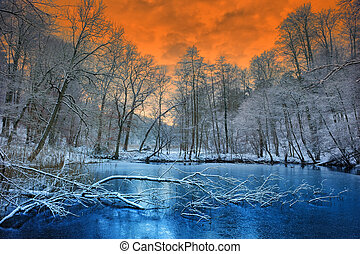 Spectacular orange sunset over winter forest