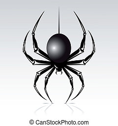 Black spider on a white background. Isolated.