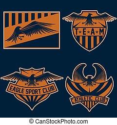 sport team crests set with eagles vector design template